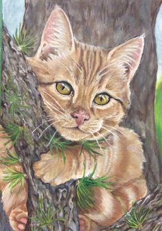Tree Hugger Just Starting To Paint This Is My Second Animal Portrait In Acrylic Paints On Stretched Canvas Always Learning Something New Animal Paintings, Animal Drawings, Acrylic Painting Animals, Cat Drawing, Pictures To Paint, Pet Portraits, Cat Art, Animal Pictures, Cats And Kittens