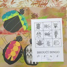 Seznámení se se životem brouků. Bingo, Office Supplies