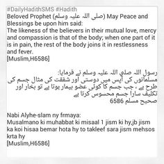 """""""#DailyHadithSMS #Hadith Beloved Prophet (صلی اللہ علیہ وسلم) May Peace and Blessings be upon him said: The likeness of the believers in their mutual love,…"""""""
