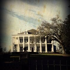 Old plantation house in Natchez, Ms I wanna live here Old Southern Plantations, Southern Plantation Homes, Southern Mansions, Southern Homes, Southern Style, Plantation Houses, Southern Charm, Revival Architecture, Southern Architecture