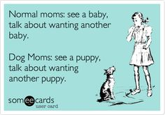 Normal moms: see a baby, talk about wanting another baby. Dog Moms: see a puppy, talk about wanting another puppy.