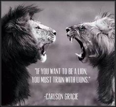 """If you want to be a lion, you must train with lions."""