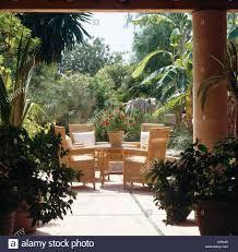 wicker furniture and green plants – RechercheGoogle Wood Interiors, Wicker Furniture, Green Plants, Google, Rattan Furniture, Foliage Plants, Cane Furniture