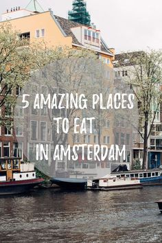5 Amazing Places to Eat in Amsterdam