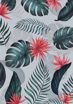 Tropical Wallpaper, Summer Wallpaper, Colorful Wallpaper, Flower Wallpaper, Pattern Wallpaper, Homescreen Wallpaper, Iphone Background Wallpaper, Cellphone Wallpaper, Aesthetic Iphone Wallpaper