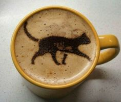 Catte latte!