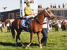 Charismatic ~ 1999 Kentucky Derby & Preakness Winner.  Most memorable Derby of my life.  Shame he didn't win the Triple Crown.