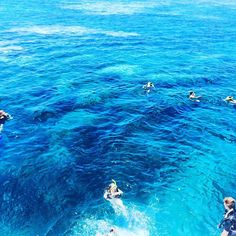 Go into the water#cairn#greatbarrierreef#Australia#snorkelling by taohongli http://ift.tt/1UokkV2