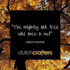 Taking #inspiration from #MotherNature as we keep growing we'll be 12 years old this #fall2015! #dutchcrafters #amishfurniture #oaktree #falltree #autumn #falliscoming #inthemoodforPSL visit us at dutchcrafters.com