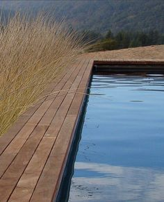 natural pool with wood deck