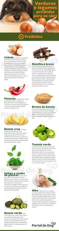 verduras-legumes-proibidos-caes-saude-alimentacao
