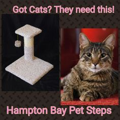ON SALE NOW! From Hampton Bay Pet Steps #catscratcher #catscratchingpost #catscratchers #kittyscratcher #cattower #catfurniture