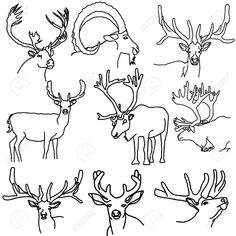 Moose Stock Vector Illustration And Royalty Free Moose Clipart