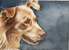 Watercolor dog portrait by Jan Riggins Custom Art Dog Portraits, Custom Art, Art Boards, Art Projects, Corgi, My Arts, Watercolor, Pets, Animals