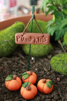 Polymer Clay Pumpkins and Sign - Terrarium Accessory - Fairy Garden Accessory…