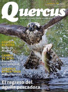 Revista Quercus Nº 339, Mayo 2014