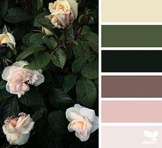 Ideas For Bedroom Paint Mauve Design Seeds Colour Pallette, Colour Schemes, Color Combos, Color Patterns, Design Seeds, Boutique Deco, Color Balance, Colour Board, Color Swatches