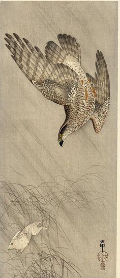Ohara Koson (1877-1945): Goshawk Chasing a Hare