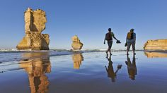 Melbourne Great Ocean Walk Hiking Tour Including the Twelve Apostles in Australia Pacific Ocean and Australia Australia Tours, Australia Beach, Vic Australia, Victoria Australia, Domestic Destinations, Hiking Tours, Cheap Tickets, Beaches In The World, Best Hikes