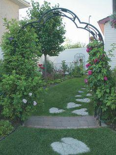 #Roses climb backyard arbour. I want more roses!. @albertagardener