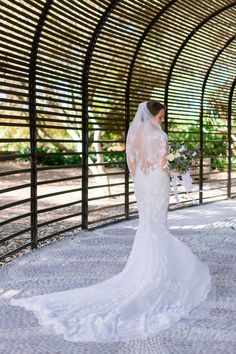 Bride with lace see-through skin detail wedding dress. Long sleeve and long train with veil. Photographed in the gardens of Babylonstoren, South Africa. Bride with lace detail long sleeve wedding dress. Wedding Season, Wedding Day, South African Weddings, Long Sleeve Wedding, Summer Months, Cape Town, Dress Long, Bridal Style, Lace Detail