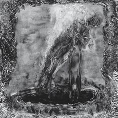 Predatory Light, an Album by Predatory Light. Released September 23, 2016 on Invictus (catalog no. IP087; CD). Genres: Black Metal.  Rated #915 in the best albums of 2016.