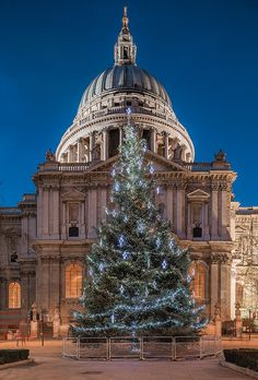 A Christmas tree brings festive cheer to St Pauls Cathedral in London, England