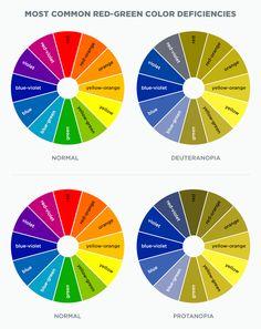 Most Common Red-Green Color Deficiencies