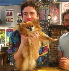 Pretty Boys, Cute Boys, Andrew Vanwyngarden, Music People, Album Releases, Dark Ages, Dogs, Animals, Instagram
