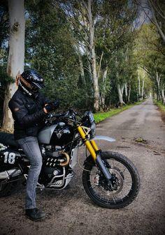 Triumph Street Scrambler, Triumph Motorcycles, Cars And Motorcycles, British Motorcycles, Moto Style, Bike Stuff, Vroom Vroom, Bikers, Motorbikes