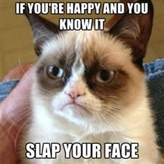 Grumpy Cat 1 - If you're happy and you know it slap your face