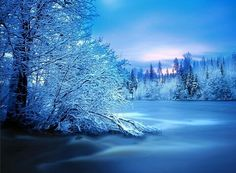 Beautiful Winter Wonderland Photos _____________________________________ Winter photography, especially in the colder parts of the world, is a specialized niche. Winter Szenen, I Love Winter, Winter Time, Winter Photography, Color Photography, Winter Pictures, Cool Pictures, Winter Images, I Love Snow