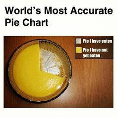Funny!  World's Most Accurate Pie Chart