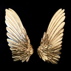 Hummingbird wings hand cut brass Black And Gold Aesthetic, Angel Artwork, Or Noir, Photoshop, Gold Walls, Black Wallpaper, Pics Art, Aesthetic Pictures, Feather