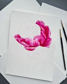 Peony watercolor illustration in process by Studio Sonate Watercolor Illustration, Peony, Studio, Prints, Instagram, Design, Peonies, Studios