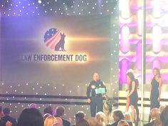 Embedded image permalink --- Law Enforcement Hero Dog Kota at the 2014 AHA Hero Dog Awards 9/27/14