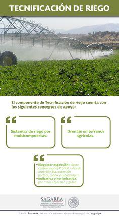 El componente de Tecnificación de riego cuenta con los siguientes conceptos de apoyo: -Sistemas de riego por multicompuertas. -Riego por aspersión -Drenaje en terrenos agrícolas.  SAGARPA SAGARPAMX