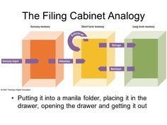 Image result for analogy for human memory Manila Folder, Human Memory, Bar Chart, How To Get, Memories, Education, Image, Memoirs, Souvenirs