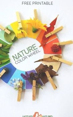 Nature Crafts The printable Nature Color and Nature Colour Wheel your kids will LOVE! Nature Crafts The printable Nature Color and Nature Colour Wheel your kids will LOVE! Forest School Activities, Nature Activities, Summer Activities, Toddler Activities, Projects For Kids, Craft Projects, Craft Ideas, Printable Crafts, Natural Materials