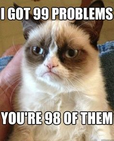grumpy cat jokes, grumpy cat meme, grumpy cat humor quotes ...For the funniest pictures and jokes visit www.bestfunnyjokes4u.com/rofl-funny-pic-of-the-day-8/
