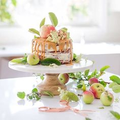 I'm now convinced that all cakes should be topped with apples. @mscraftberrybush swayed me. #farmhouseholidayseries #applecake #recipes #styling #photography