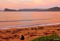 ✣... To go out with the setting Sun on an empty beach is to truly embrace your Solitude…   ✣ Jeanne Moreau  Photograph © ellen♥  vaman - Umina Beach, Australia www.facebook.com/ellenvaman