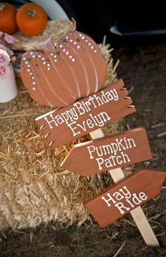 roses and pumpkin pink and orange first birthday party farm pumpkin patch sign Pumpkin Patch Birthday, Pumpkin Patch Party, Pumpkin Birthday Parties, Pumpkin First Birthday, First Birthday Parties, Birthday Ideas, Kid Parties, Fall 1st Birthdays, Halloween First Birthday