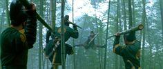House of Flying Daggers -- Bamboo Split