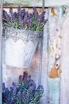 LAVENDER SEEMS TO BE 'LOVED' ALL AROUND THE WORLD!! - SUCH A LOVELY WAY, TO DISPLAY SUCH A GORGEOUS AND VERY FRAGRANT FLOWER!!