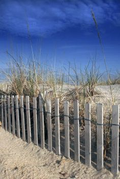 Seaside blue - Kim Avent-DiLorenzo...