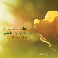 """""""Intuition is the guidance of the soul. Its seat is in the third eye the center of the brow. Since meditation leads to self-awareness, and self-awareness leads to conscious living, meditation is an essential key that takes you out of the loop of automatic living. When subconscious patterns are neutralized, they cannot overpower a conscious person. As a result, the mind puts itself at the service of the soul."""" - Dr. Joseph Michael Levry"""
