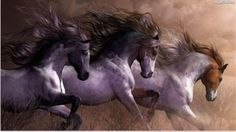 """Animal HD Print on canvas oil painting ,""""horse,running""""16x28 in Art, Wholesale Lots, Prints 