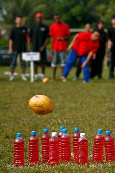 Coconut Bowling - Hawiian