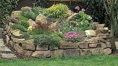 Tipps und Ideen zum Steingarten anlegen bei zuhause.de: Die passenden Steine und Steingartenpflanzen und was Sie beim Steingarten anlegen beachten müssen.